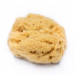 The Olive Tree Natural Sea Sponge